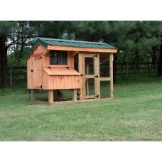 The Nancy Amish Chicken Coop